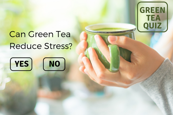 Can Green Tea Reduce Stress?