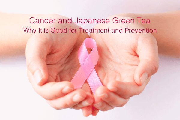 Cancer and Japanese Green Tea - Why It is Good for Treatment and Prevention