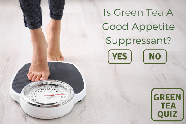 Is Green Tea A Good Appetite Suppressant?