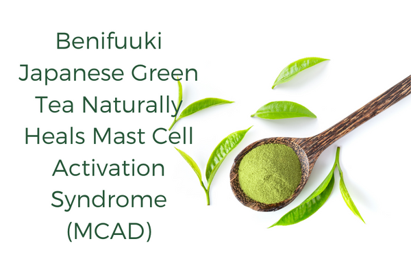Benifuuki Japanese Green Tea Naturally Heals Mast Cell Activation Syndrome (MCAD)
