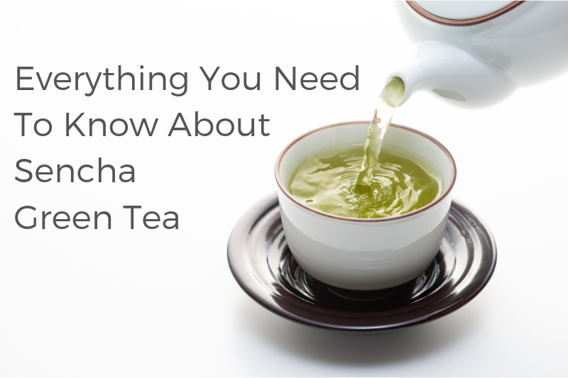 Everything You Need To Know About Sencha Green Tea