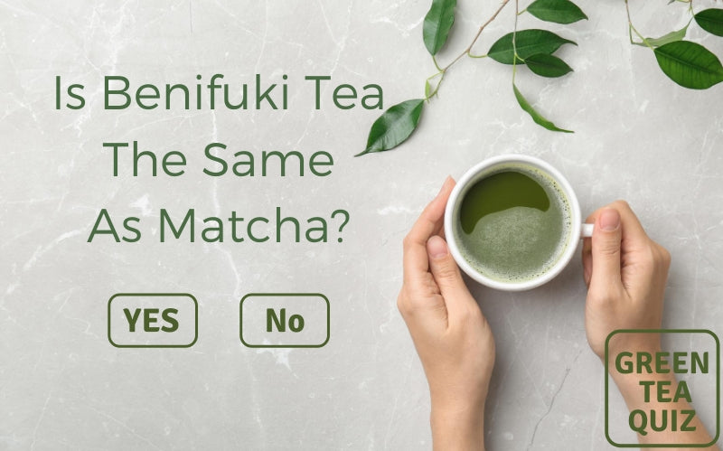 Is Benifuuki Tea The Same As Matcha?