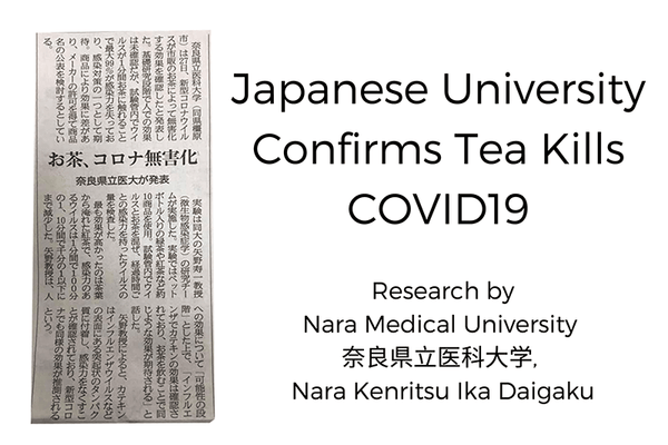 Japanese University Confirms Tea Kills COVID19