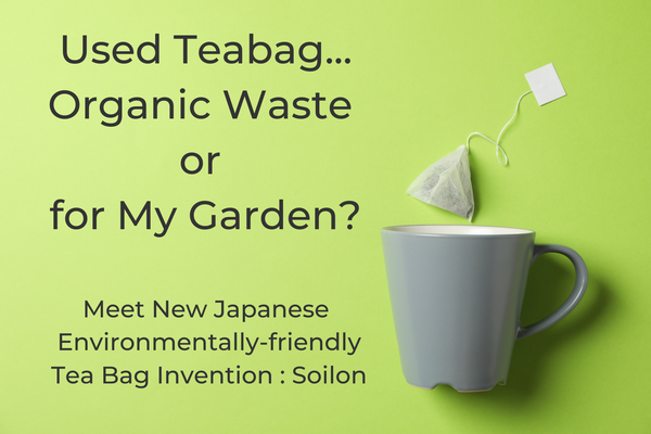 Used Teabag - Organic Waste or for My Garden?
