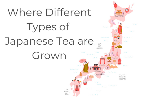 Where Different Types of Japanese Tea are Grown