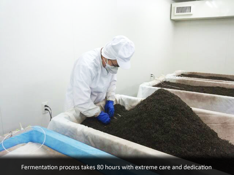 Fermentation process takes 80 hours with extreme care and dedication