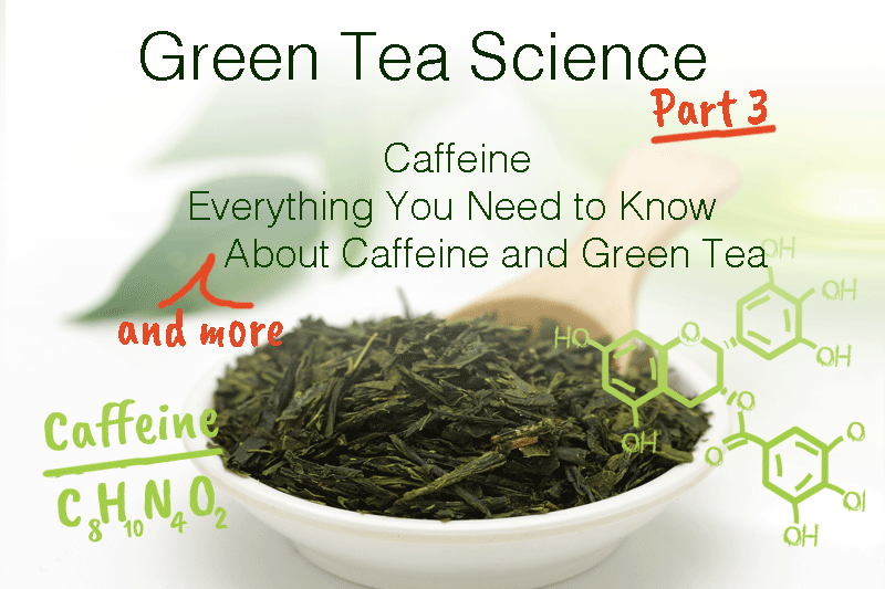 GREEN TEA SCIENCE PART 3: CAFFEINE - EVERYTHING YOU NEED TO KNOW (AND MORE) ABOUT CAFFEINE AND GREEN TEA