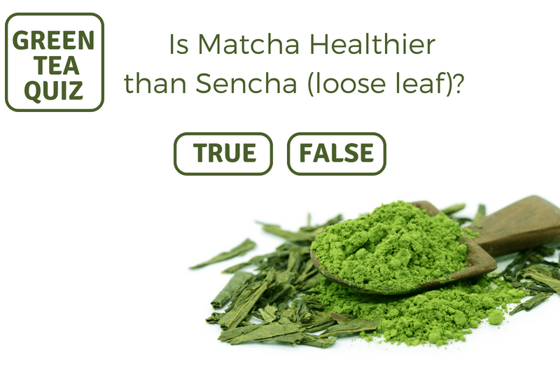 IS MATCHA HEALTHIER THAN SENCHA (LOOSE LEAF)?