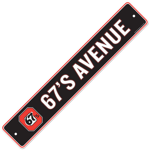 Ottawa 67's 4x23 Street Sign