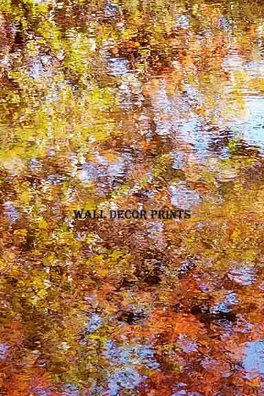 Abstract Reflection of Fall Colors