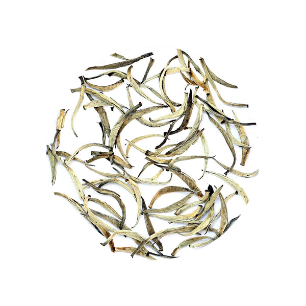Silver Needle Tea/ White Tea