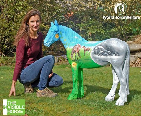 Haygain® supports World Horse Welfare and sponsor of Macy on the Badminton Invisible Horse Trail