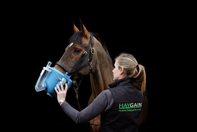The Evolvement of Flexineb Equine Nebulisers