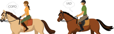 Respiratory Problems in Horses – conquering the names and abbreviations