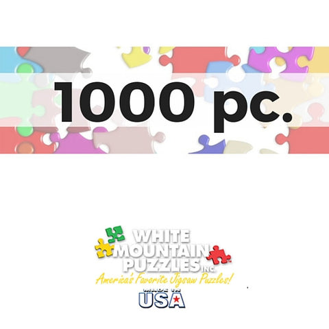 Jigsaw Puzzles- Assorted 1000 pc. - Davis Distributors Inc