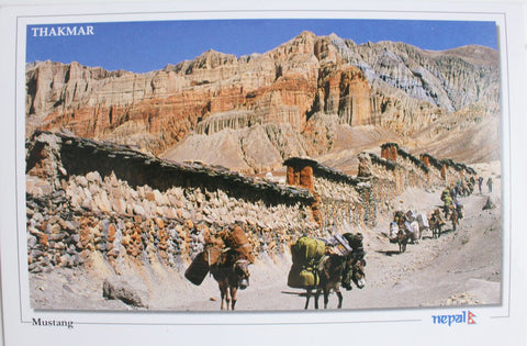 Blessed Land of Mustang Postcard Nepal