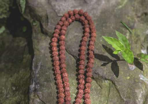 Rudraksha 108 Beads Holy Mala for Meditation and Yoga - nepacrafts