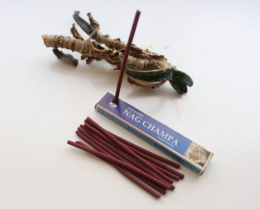 Set of 12 Shashi Nagchampa Dhoop Sticks - nepacrafts