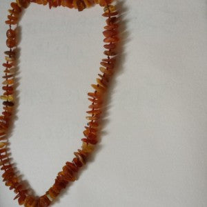 Baltic Amber Pet Necklaces 35cm / 14 inches