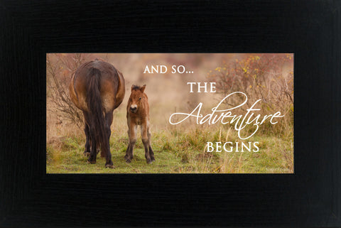 And So...The Adventure Begins horse SSW1514