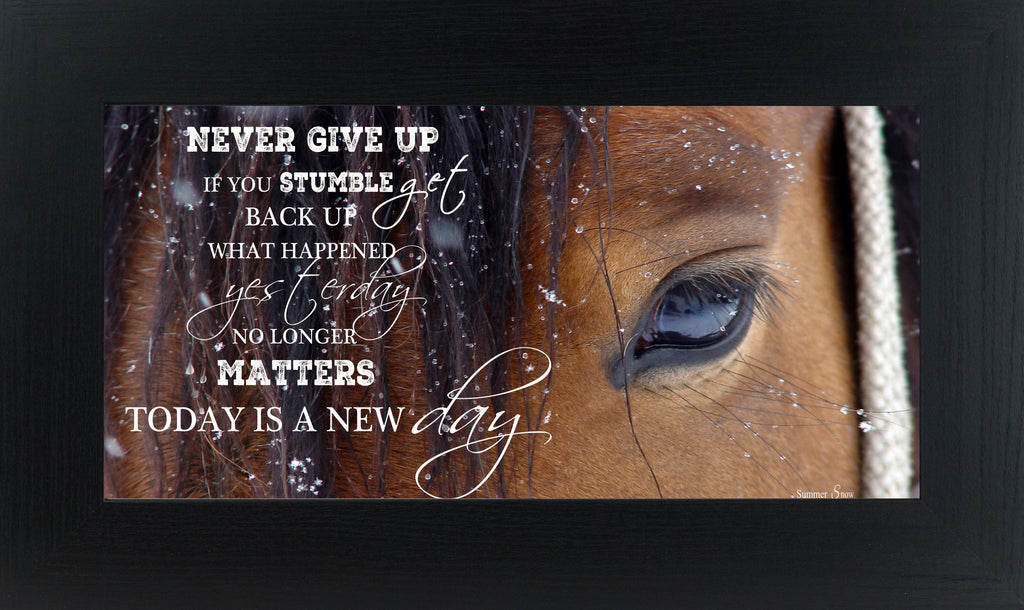 Never Give Up Brown Horse Eye SSW1865 - Summer Snow Art