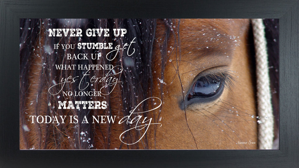 Never Give Up Brown Horse Eye SSW1865