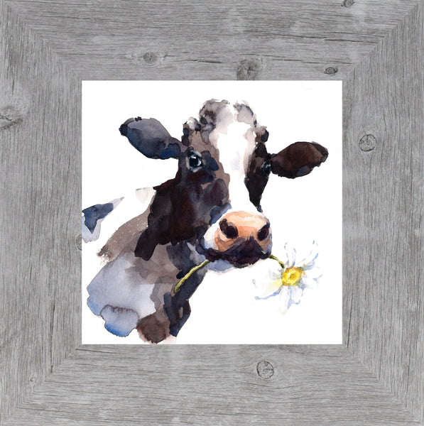 Daisy Cow by Summer Snow SS500