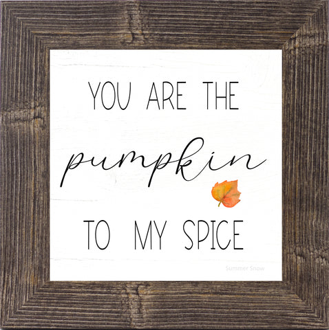 You Are the Pumpkin to My Spice by Summer Snow SS875