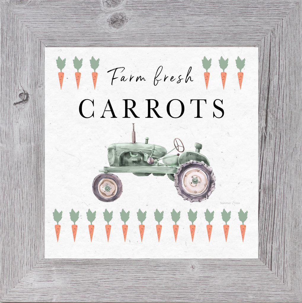 Farm Fresh Carrots by Summer Snow SS919