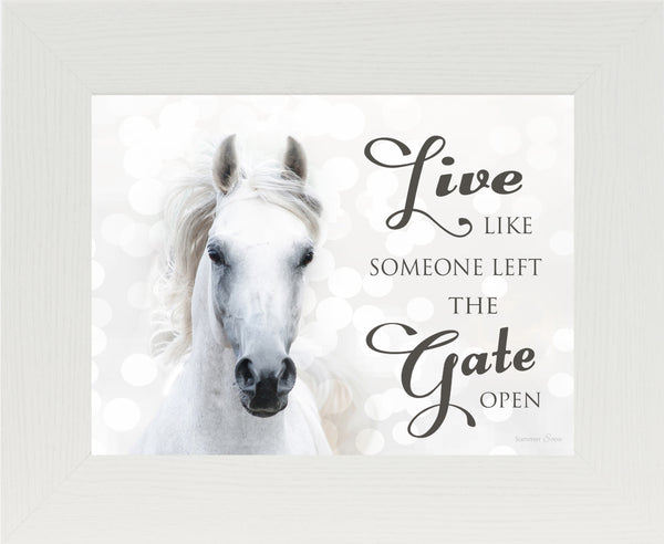Live Like Someone Left the Gate Open white horse SSW9819 - Summer Snow Art