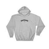 Sharknado/Hooded Sweatshirt
