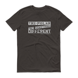 Tri-Polar Grey Logo Men's Anvil T-shirt - Do Work! Collection by Hager & Barrick