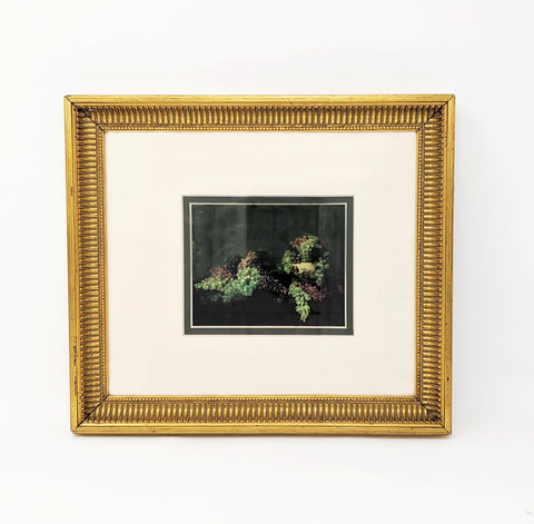 """Untitled (Still Life, Grapes), Framed Print Copy"
