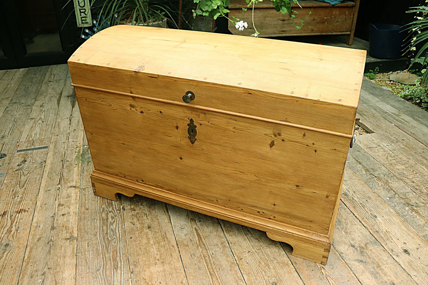 ❤️  WOW! BIG!! OLD PINE DOMED BLANKET BOX / CHEST/ TRUNK ❤️ - oldpineshop.co.uk