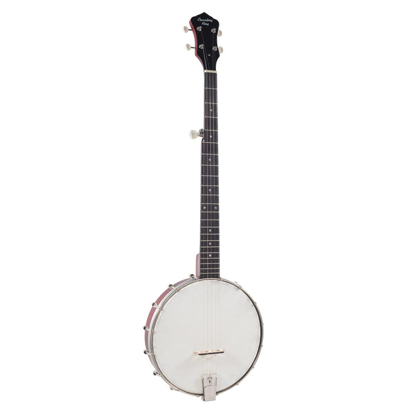 Recording King Dirty '30s RKOH-05 Open Back Banjo