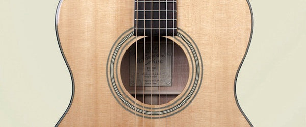 Recording King RO-10 Acoustic Guitar