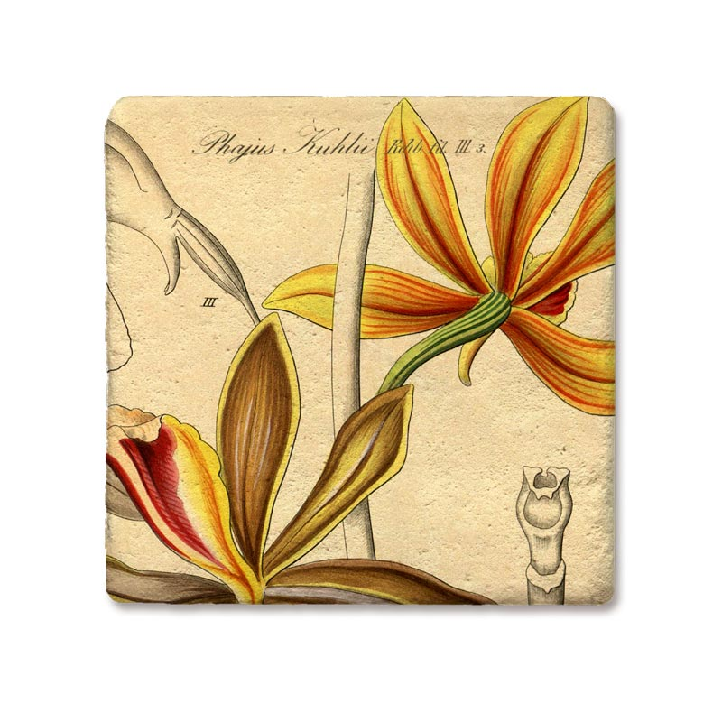 Golden Orchid Coaster