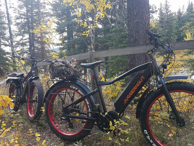 ⭐⭐⭐⭐⭐ <br>Perfect hunting bike
