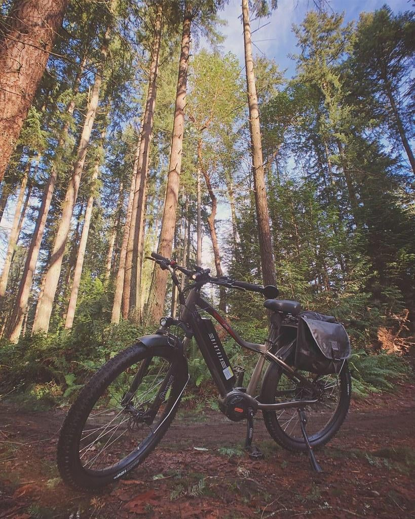 Biktrix electric fat bike in the forest.