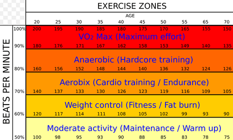 RUSEEN Reflective Apparel - Exercise Level Chart Based On Age