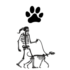 Female Dog Walk Skeleton design features a single paw print on the shirt front & a skeleton with a pony tail walking a skeleton dog on the back by a leash