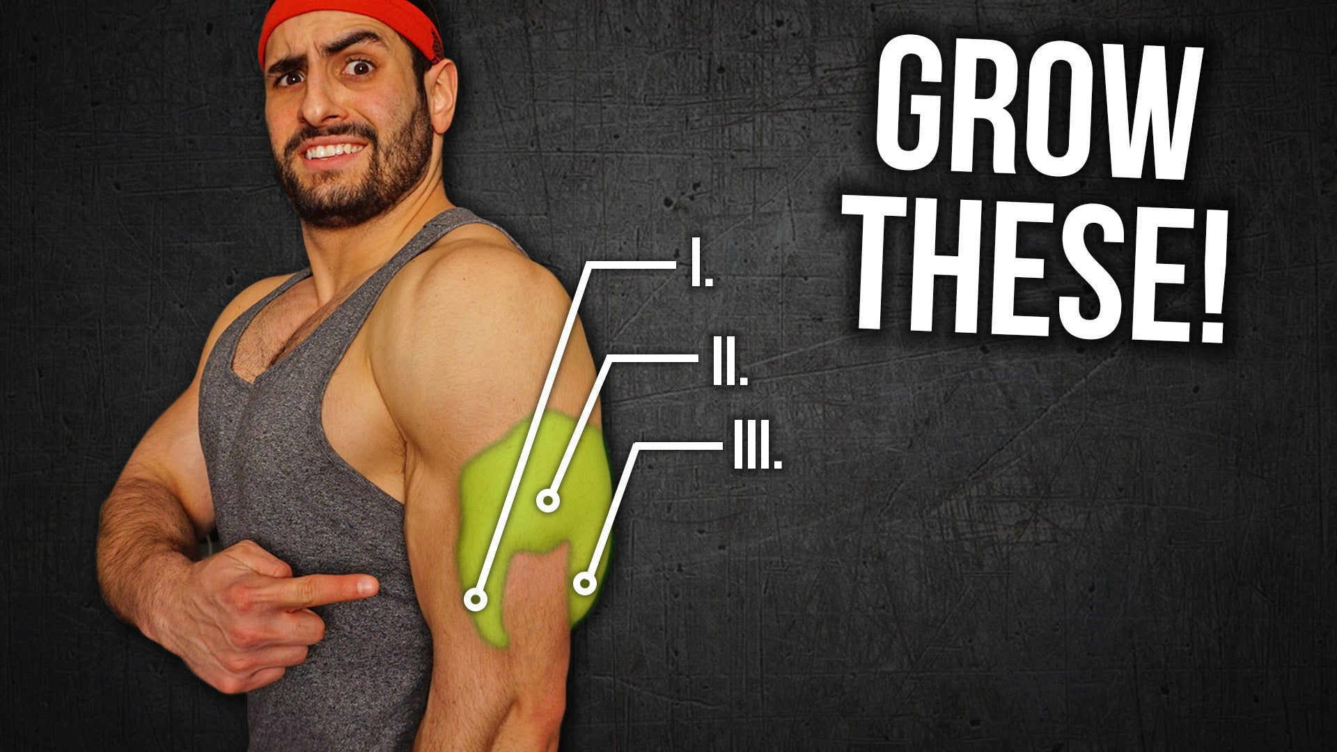 4 Exercise Triceps Workout For Mass Grow Your Horseshoe