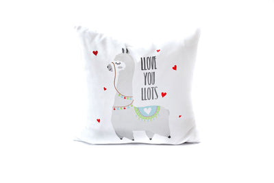February I Love U Pillow Palooza