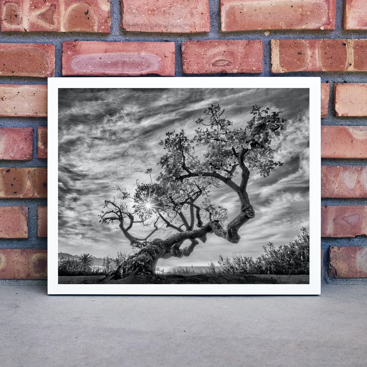 Black and white tree art print