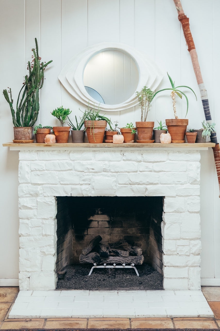 Fireplace with plants on the mantle