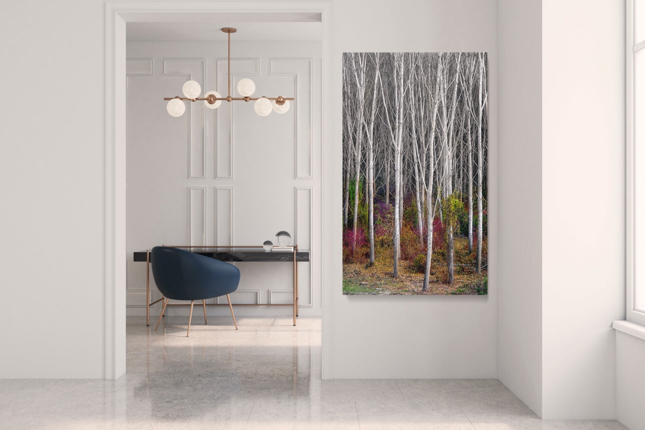 Forest wall art in a modern home