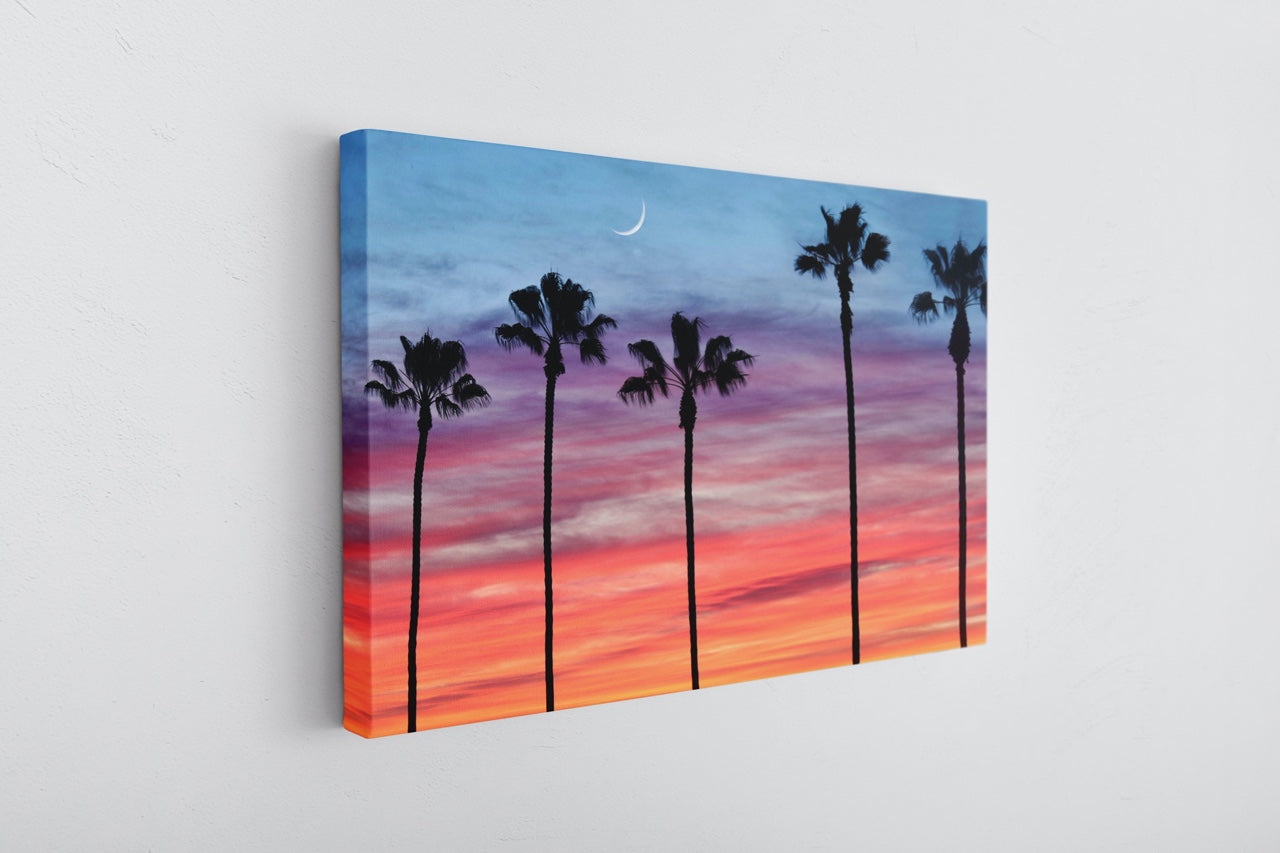 Colorful sunset palm tree photo on canvas