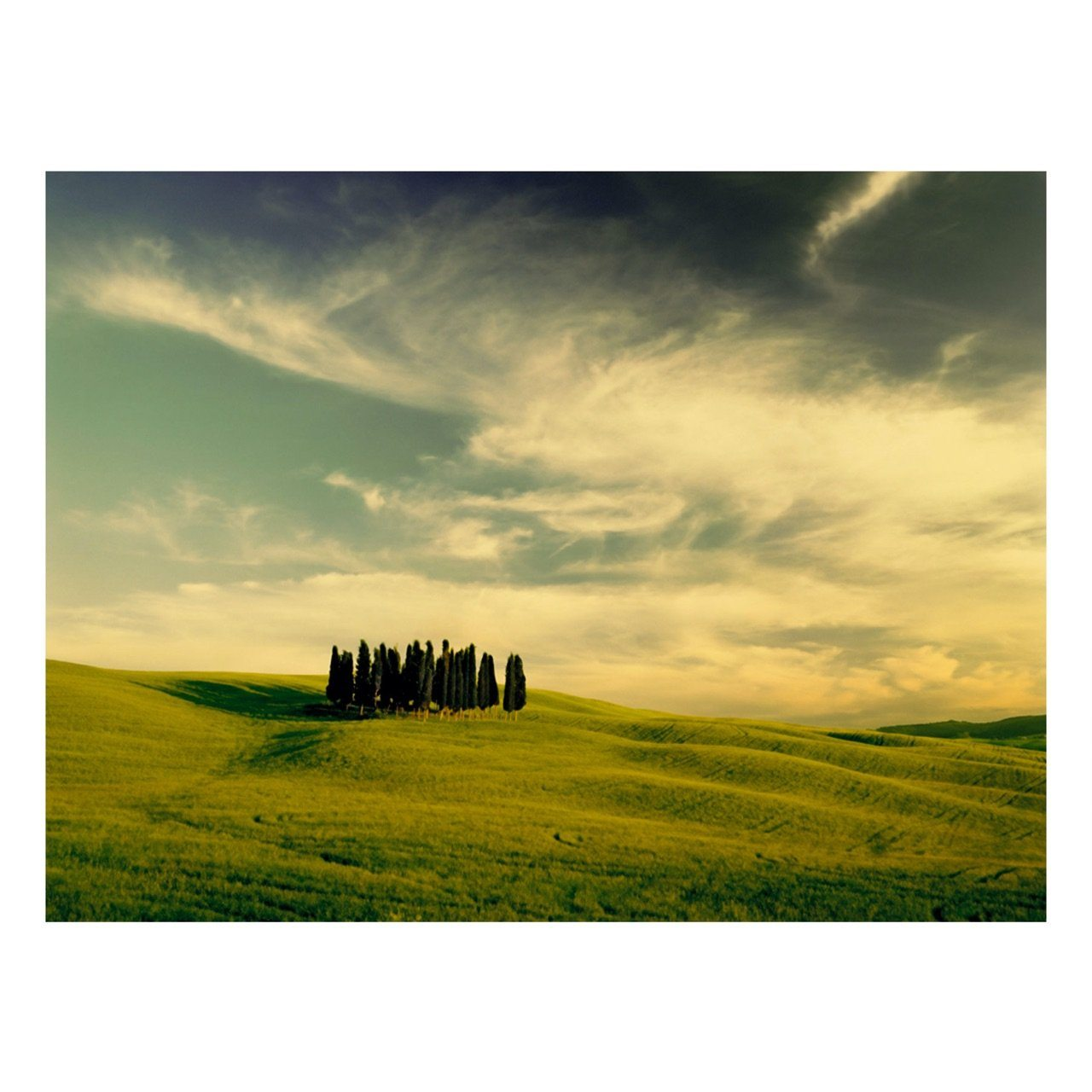 "Fine Art Prints - ""Bella Toscana"" 