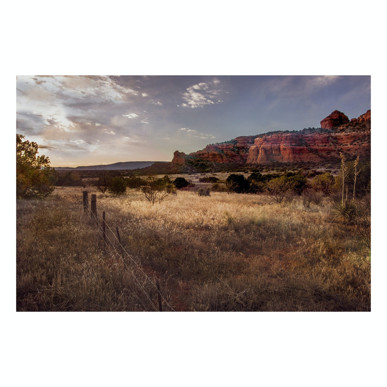 "Fine Art Prints - ""Field Of Light In Sedona"" 