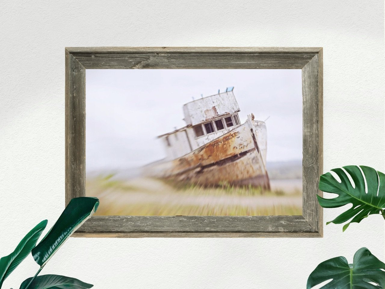 "Fine Art Prints - ""ShipWrecked"" 
